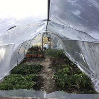 azienda agricola (3)